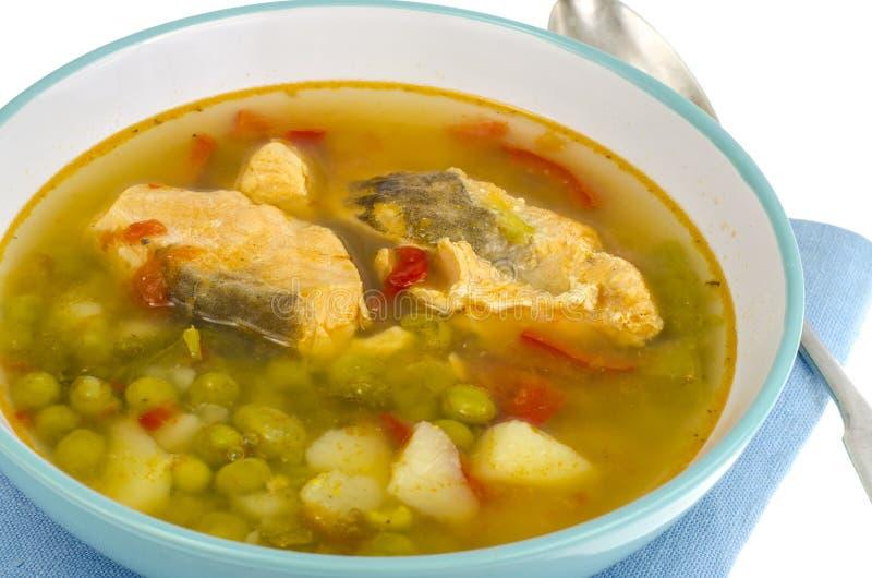 Warzywo rybia polewka z łososiem obrazy stock