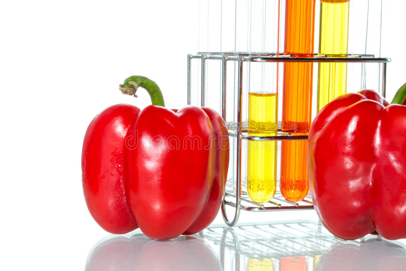 Warzywo test, Genetyczna modyfikacja, pieprz obrazy stock