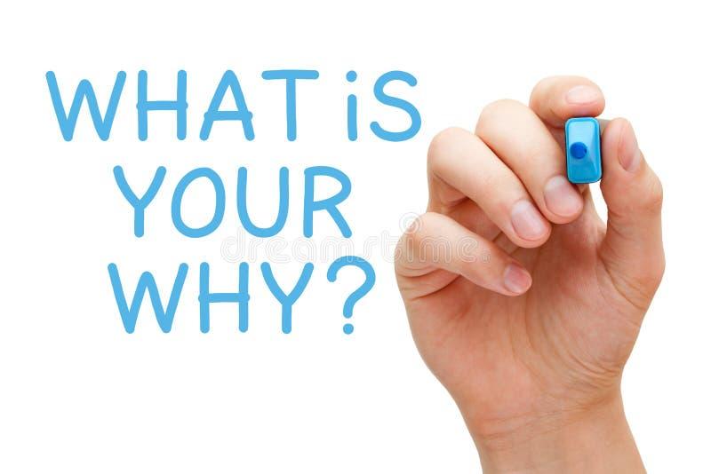 Was Ihr warum Zweck-Konzept ist lizenzfreies stockfoto