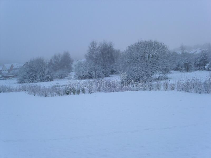 A winter`s day in Norwich, United Kingdom, December 29th, 2005. This was taken of a field in Norwich after snow in the winter. The whole landscape was white royalty free stock photography