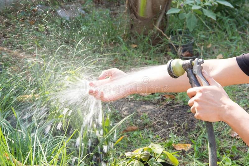 Was uw handen na het planten van een boom royalty-vrije stock foto's