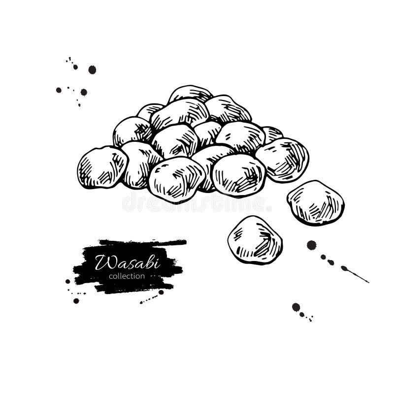 Wasabi grochów wektoru rysunek Ręka rysująca japońska zakąska Suchy pikantności jedzenie royalty ilustracja