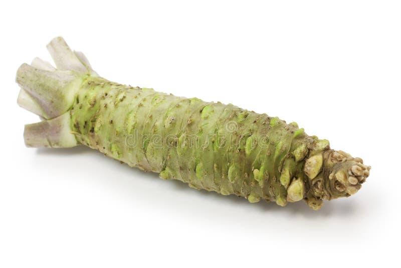 Wasabi, japanese horseradish. Japanese condiment for sushi and sashimi royalty free stock photography