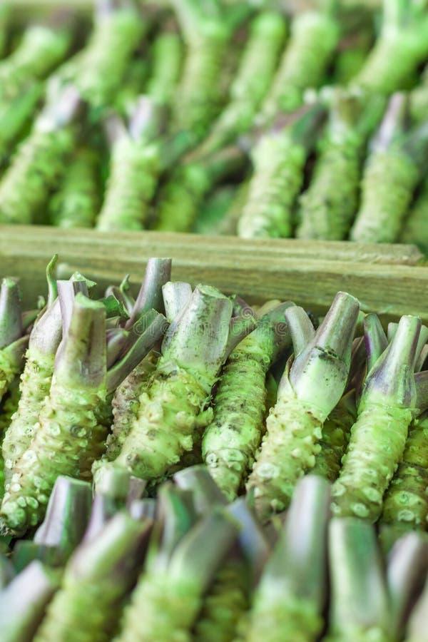 Wasabi korzeń dla sprzedaży w typowym japończyka rynku zdjęcie royalty free