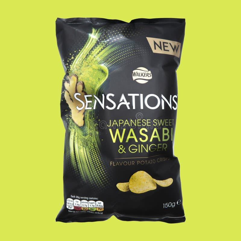 Wasabi y Ginger Flavour Potato Crisps dulces japoneses fotos de archivo libres de regalías