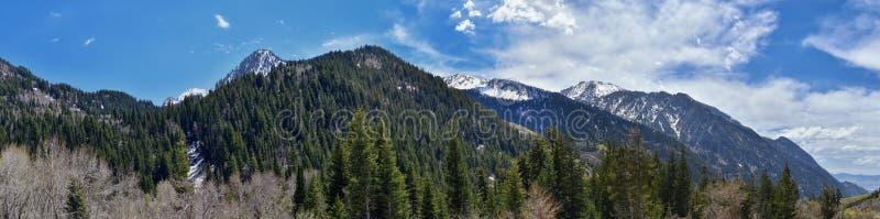 Wasatch全景朝向从看往大盐湖谷的小的三角叶杨峡谷的落矶山及早 库存图片