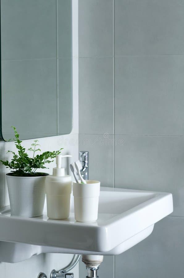 Wasbak en spiegel in een badkamers royalty-vrije stock foto's