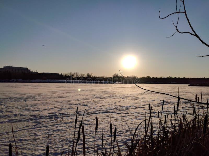 Wascanameer in de Winter royalty-vrije stock afbeelding