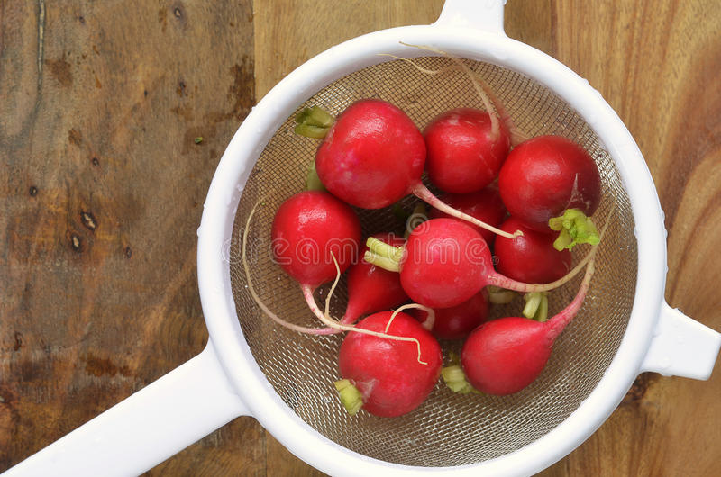 Download Washed radishes stock image. Image of board, copy, room - 36536497