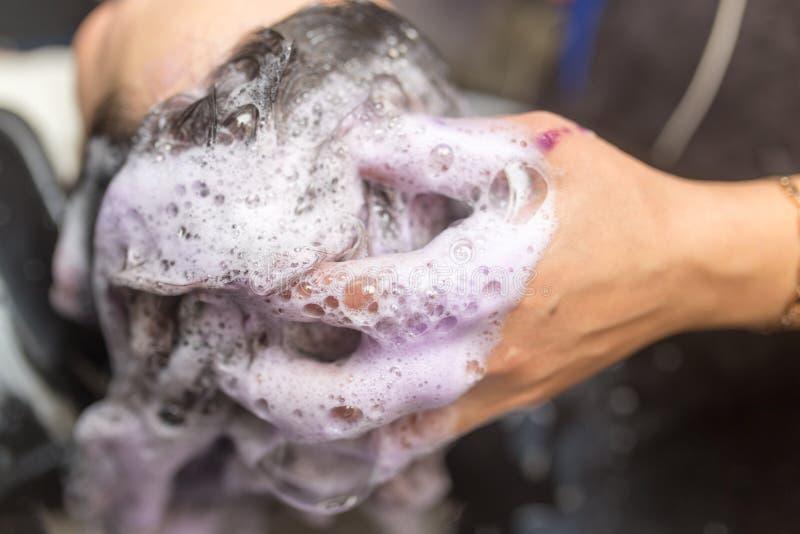 Washing of female hair stock images