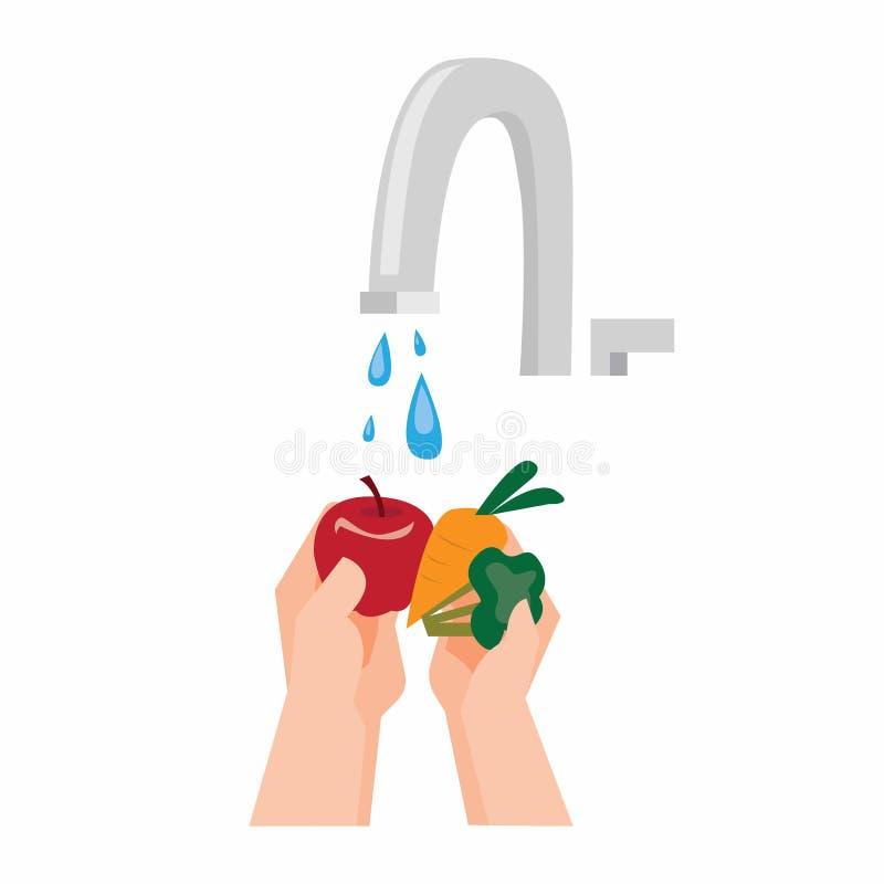 Washing vegetable stock illustration. Illustration of ...