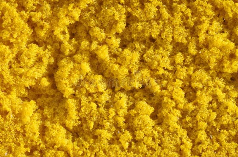 Washing Sponge Texture royalty free stock images