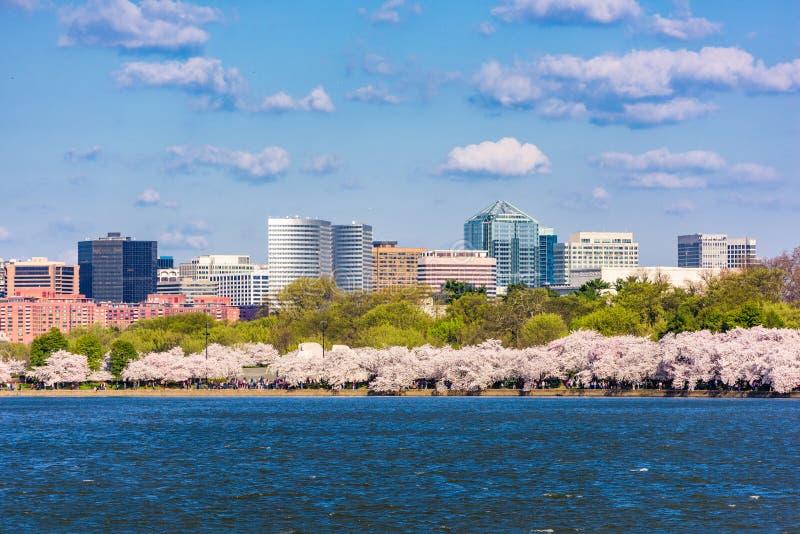 Washington, C.C, Etats-Unis au bassin de marée images stock