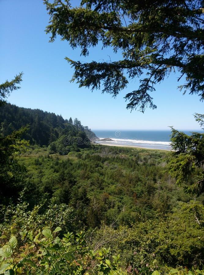Washington Coast images libres de droits