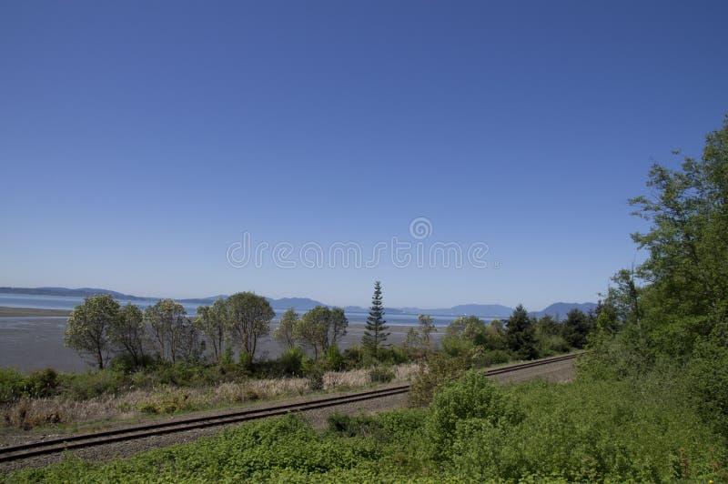 Download Washington Coastline Railroad Tracks Stock Photo - Image of landscape, trees: 42891900