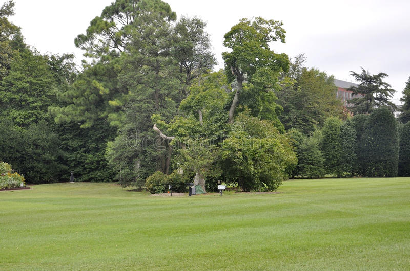 Washington DC, 5 Augustus: Wit Huispark van Washington District van Colombia royalty-vrije stock fotografie