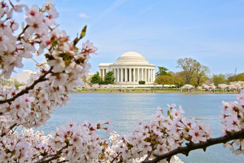 Washington DC da bacia maré imagens de stock