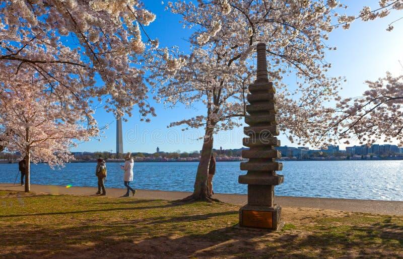 WASHINGTON DC - 8 DE ABRIL DE 2018: O monumento do pagode de Japnaese aninhado dentro entre as árvores de cereja no banco da baci foto de stock royalty free