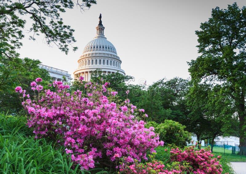Washington DC de la bóveda del capitolio de los E.E.U.U. imágenes de archivo libres de regalías
