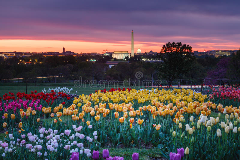 Washington DC de négligence de lever de soleil photographie stock