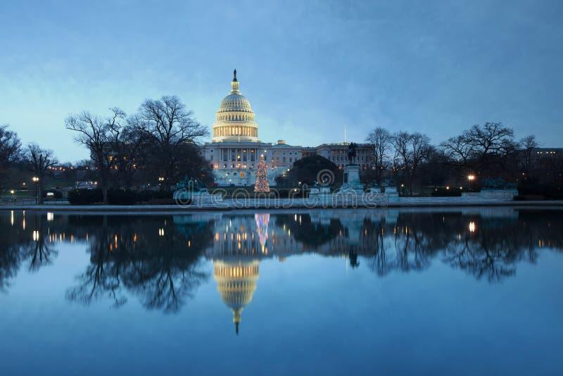 Washington DC del árbol del día de fiesta de la alba del capitolio de los E.E.U.U. imagen de archivo libre de regalías