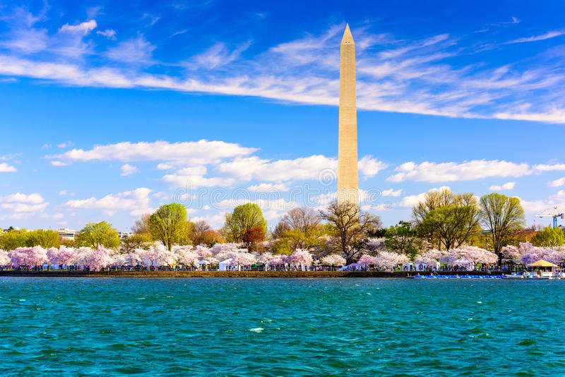Washington DC en el lavabo de marea imagen de archivo