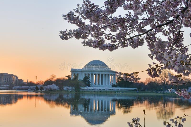 Washington DC - Jefferson Memorial in spring stock image
