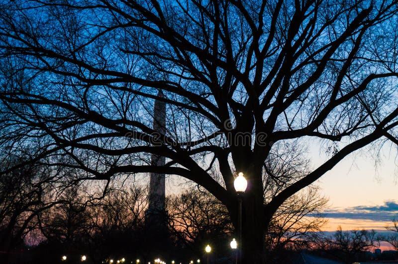 Washington DC-monument på natten royaltyfri fotografi