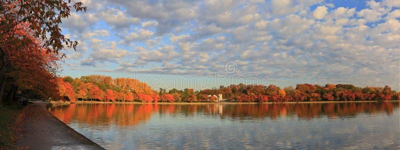 Washington DC pływowy basen w jesieni fotografia stock