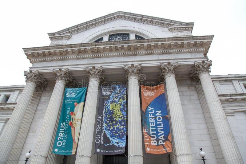 WASHINGTON DC, USA-JUNE 12,2018: Davanti al museo nazionale di storia naturale è il grande museo nella CC, U.S.A. fotografia stock libera da diritti