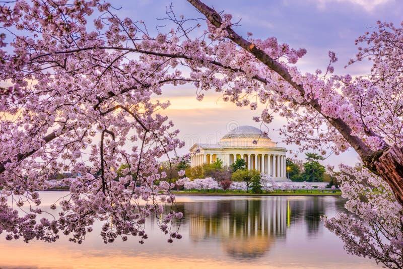Washington DC, usa przy Jefferson pomnikiem obraz stock