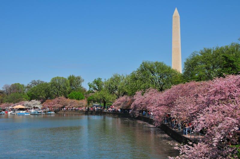Washington-Denkmal lizenzfreie stockfotografie