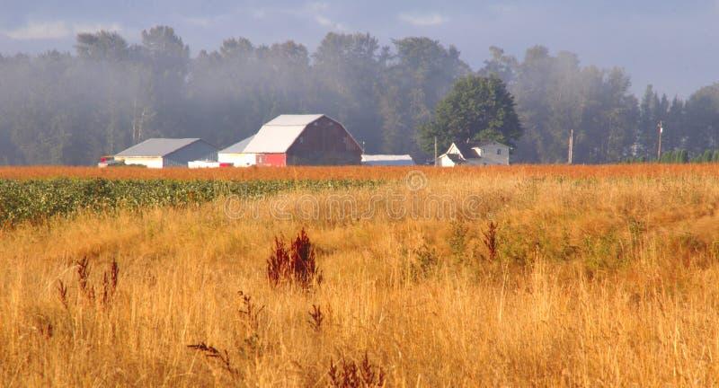 Washington Farm Landscape photographie stock libre de droits