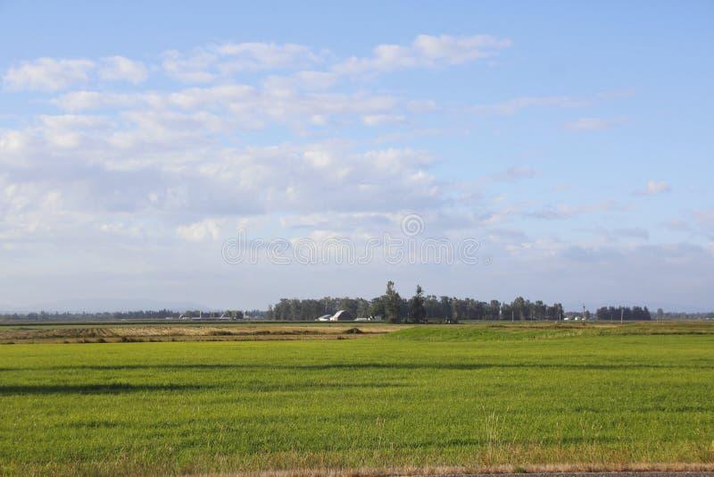 Washington Landscape rural grand ouvert photos libres de droits