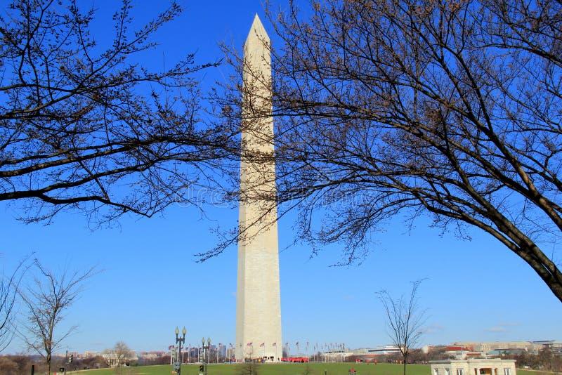 Washington Memorial op een Koude de Lenteochtend, Washington, gelijkstroom, 2015 stock fotografie
