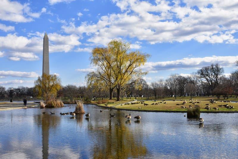 Washington Monument dai giardini di costituzione - Washington DC, U.S.A. fotografia stock