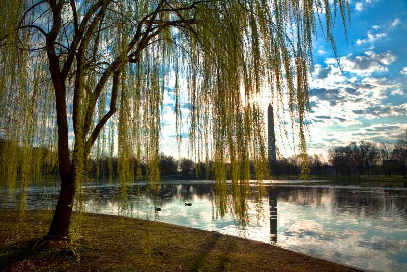 Washington Monument Landscape stockfotos