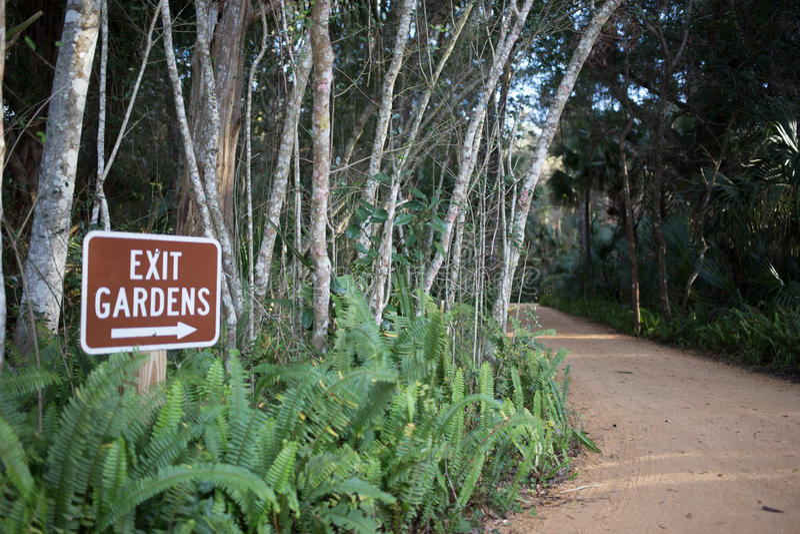 Washington Oaks delstatspark royaltyfri fotografi