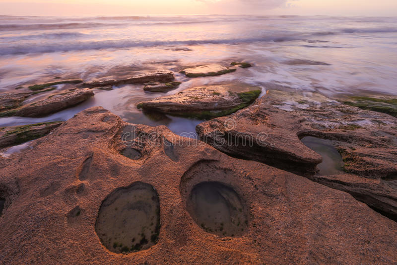 Washington Oaks Sunrise arkivfoto