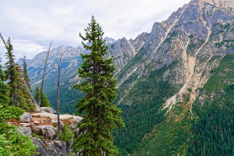 Washington Pass, cascatas nortes imagem de stock royalty free