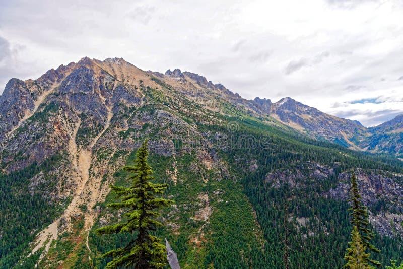 Washington Pass, cascatas nortes imagens de stock