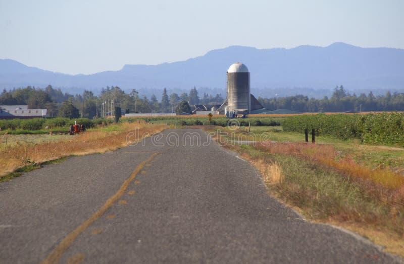 Washington Rural Road et paysage photo libre de droits