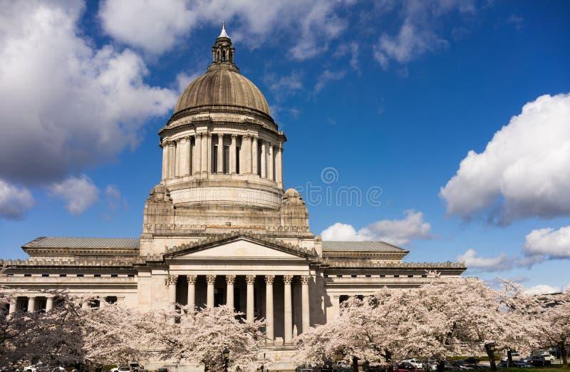 Washington State Capital Building Olympia vår Cherry Blos arkivfoto