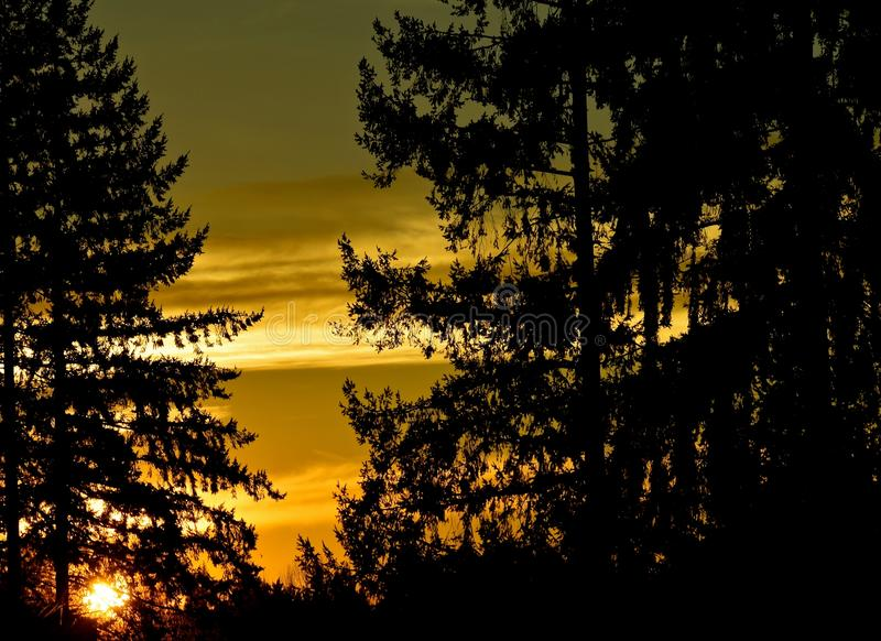 Washington Sunset clássico imagem de stock royalty free