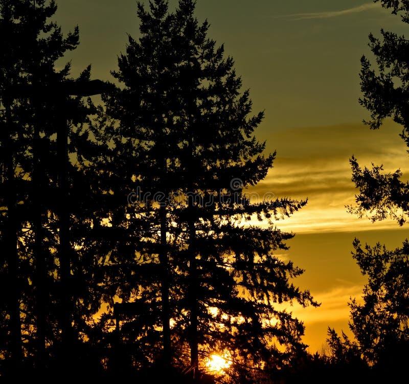 Washington Sunset clássico imagens de stock royalty free
