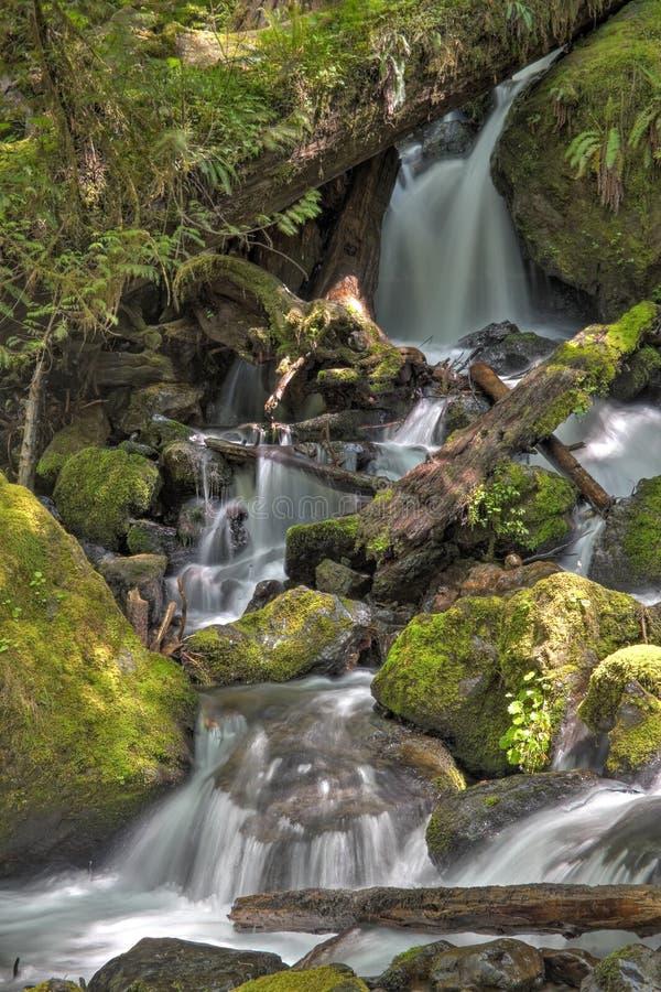 Washington Waterfall photographie stock libre de droits