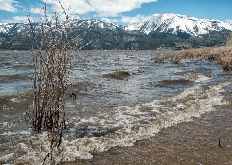 Washoe jezioro, wysoka woda fotografia stock