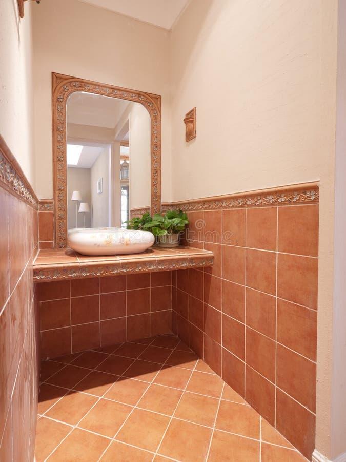 Download Washroom stock image. Image of green, tile, leaf, home - 12401619