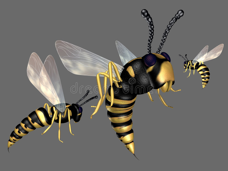 Wasp. 3d render of cruel wasps stock illustration