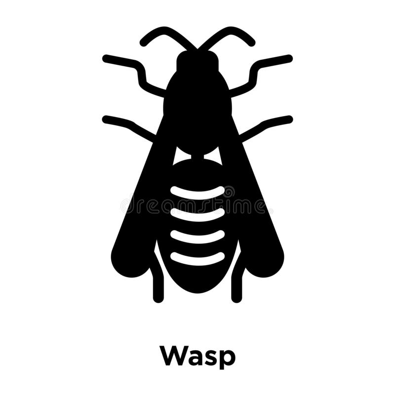 Wasp icon vector isolated on white background, logo concept of W vector illustration